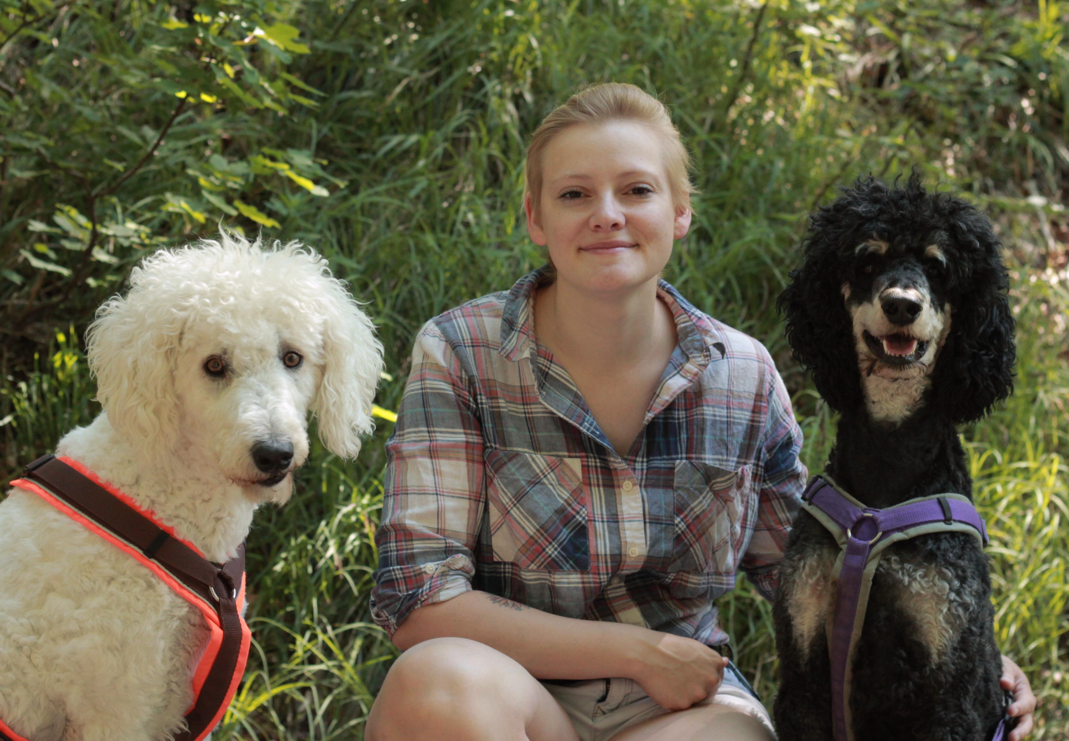 Hundefälle Jessica Berger