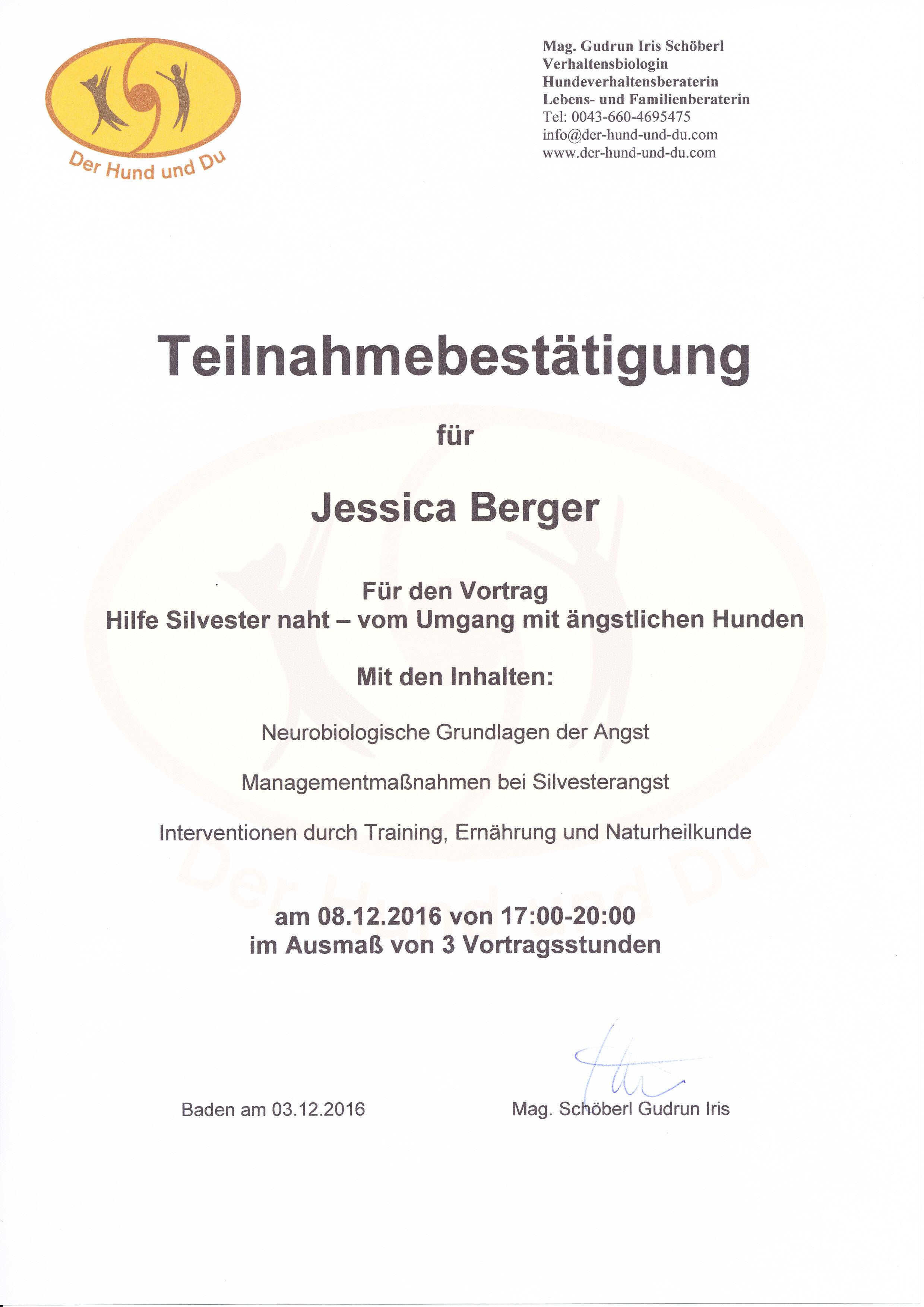 Hilfe, Silvester naht - Iris Schöberl