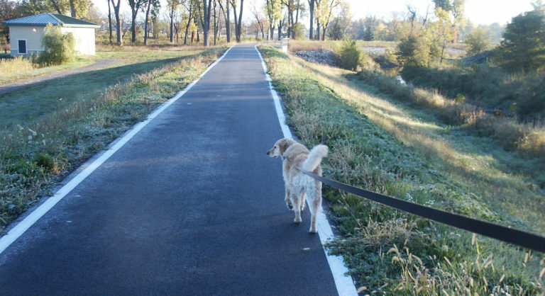 Hundefälle Blog - Leinenführigkeit